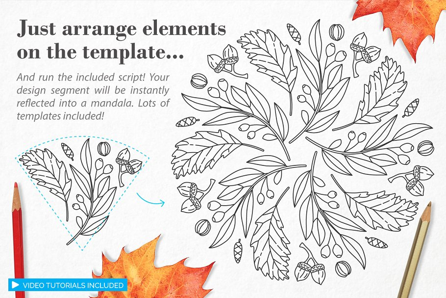 秋季图案生成illustrator插件 Autumn Harvest Mandala Creator插图1