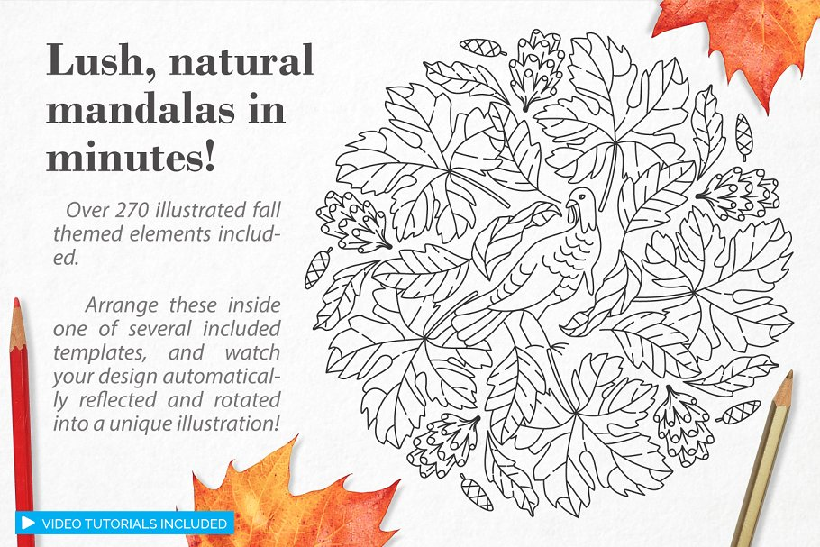 秋季图案生成illustrator插件 Autumn Harvest Mandala Creator插图4