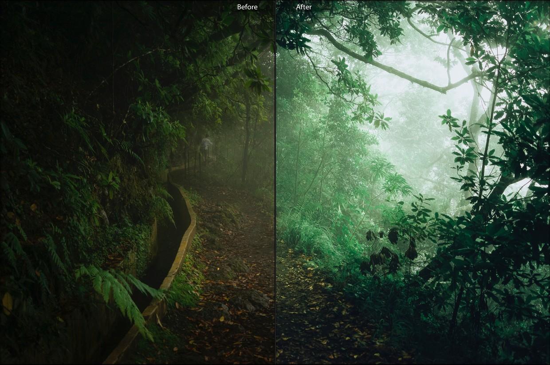 手机版喜怒无常复古Lightroom预设森林/丛林预置包插图5